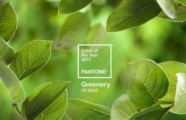 Το greenery είναι το χρώμα της χρονιάς για το 2017, σύμφωνα με την Pantone.